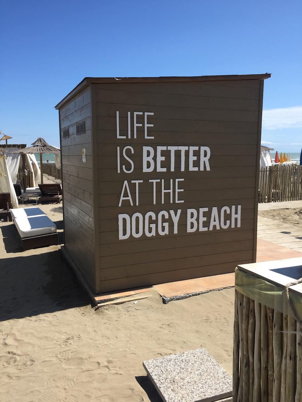 Doggy beach in Lignano – mein Tipp für einen  Hundeurlaub am Strand!